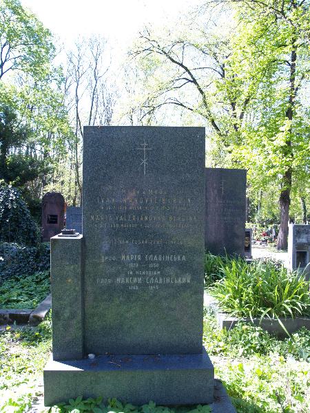Ольшанське кладовище, частина 2ob, відділ 18, поховання №291.