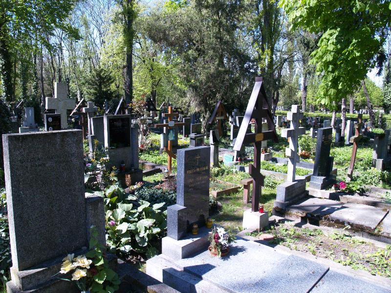 Вид збоку на могилу Юрія Вовка та Євгена Віханського.