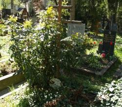 Ольшанське кладовище, частина 2ob, відділ 18, поховання №389.