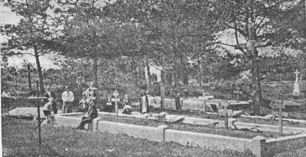 Могили українських вояків на цвинтарі в Раві Руській.
