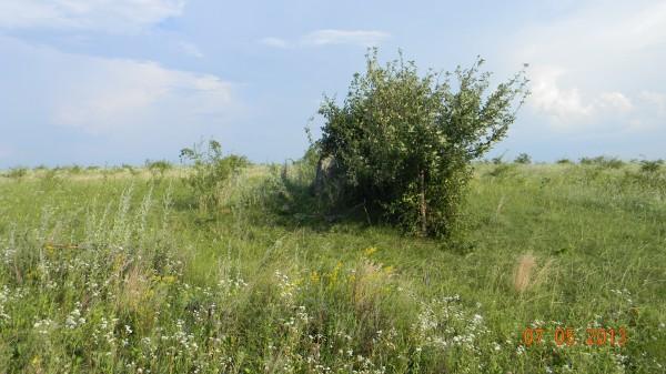Місце поховання: вид здалеку